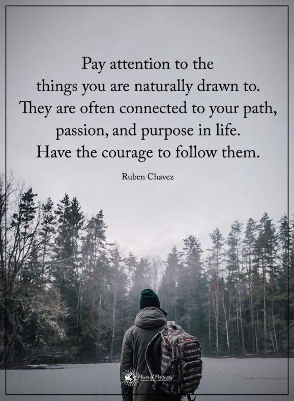 84a77dbe9bb5e7344e47c8c843802089--path-quotes-nature-life-path-quotes