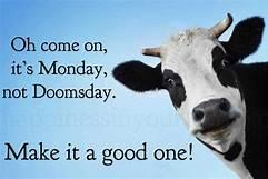Happy Monday 11