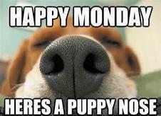 Happy Monday 12