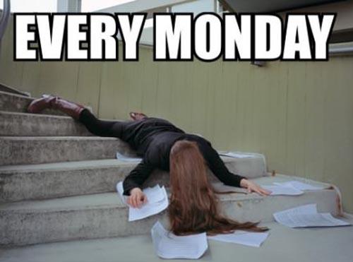 Monday Meme 2